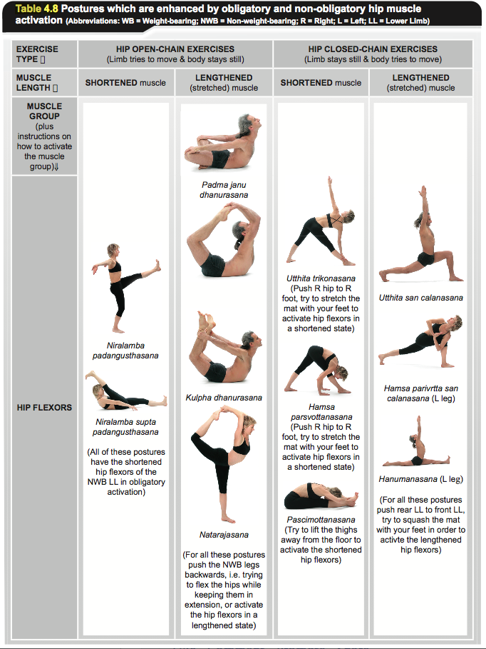 Images - Hip strengthening exercises for seniors