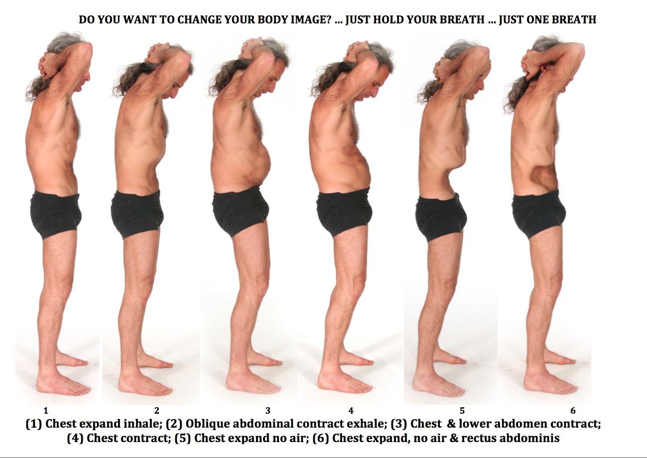 Muscle Exercise Transversus Abdominis Muscle Exercise